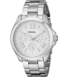 Hodinky Fossil AM4509