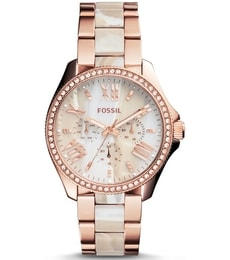 Hodinky Fossil Cecile AM4616
